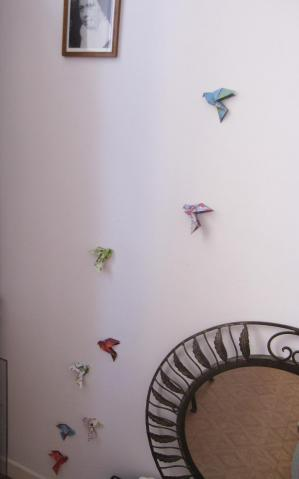Vol de colombes 1