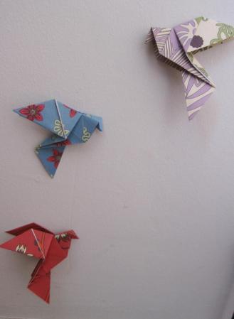 Vol de colombes 2